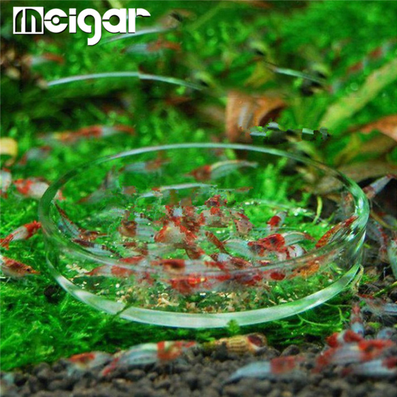 Clear Glass Shrimp Feeding Food Dish Feeder Tray Round Container Aquarium Fish Tank Feeding Bowls Feeding Tropical Fish Ratfish