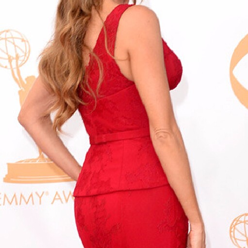 Free-Shipping-Charming-Deep-V-Neck-Sofia-Vergara-Red-Mermaid-Lace-Celebrity-Dress-Emmy-Awards-2016 (3)