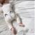 Primavera Meninos Meninas Harem Pants Raposa Dos Desenhos Animados Calças Compridas Para criança Legal Bebê Menino Menina Roupas Harem Pants Crianças Raposa calças
