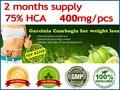 Гарциния камбоджийская потери веса диета дополнения Сжигать Жир (75% HCA) гарциния cambogia Похудения (200 Матчей за 2 месяца поставки!)