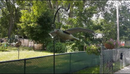 Skifteri Flying - Kopshti i dëmtuesve Zhurmë mashtruese e - Produkte kopshti - Foto 6
