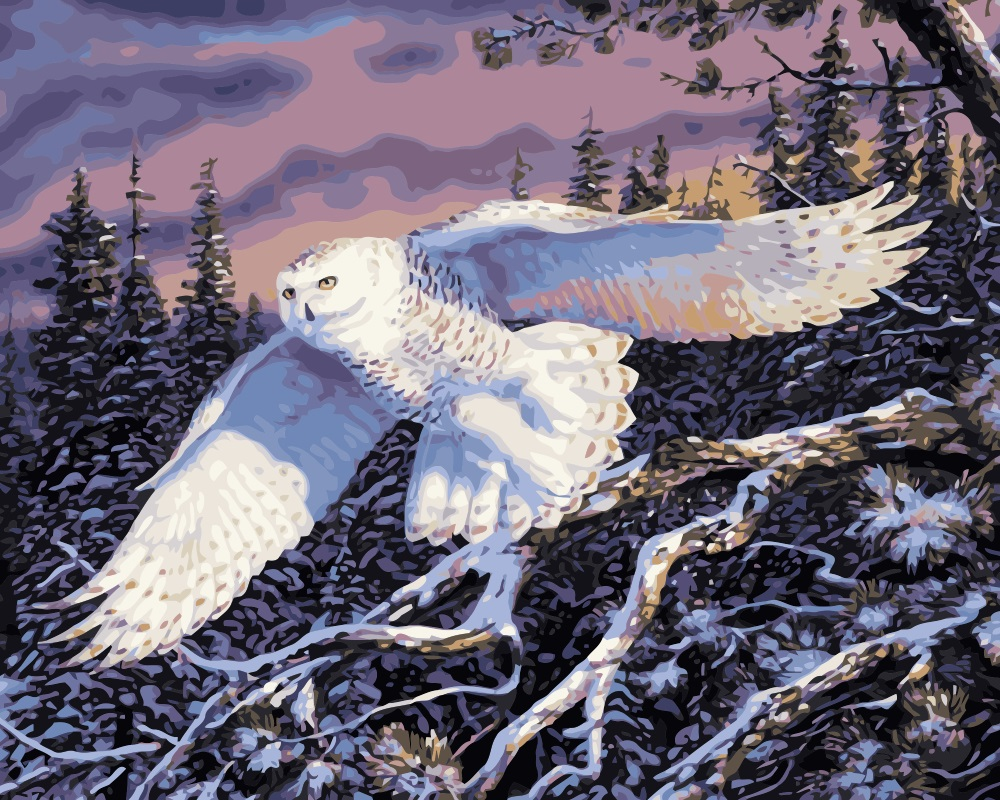 MaHuaf i778 DIY oil painting by numbers animals snowy owl ...