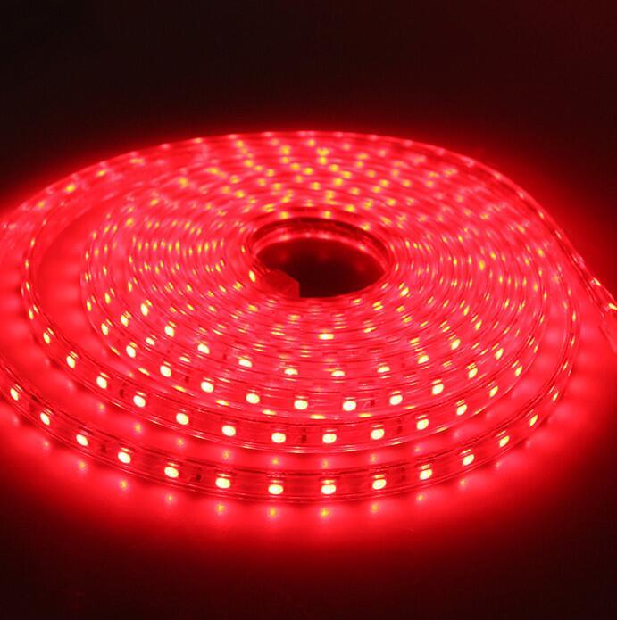 Водонепроницаемый SMD5050 Светодиодная лента AC220V компании mlight, работающая при напряжении 60 светодиодов/метр наружного освещения сада со штепсельной вилкой европейского стандарта