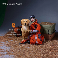 цена на Mr.Z 1/6 Scale Solider Figure Scene Accessories Golden Retriever Animal Dog Model Toy for 12'' Action Figure Collections