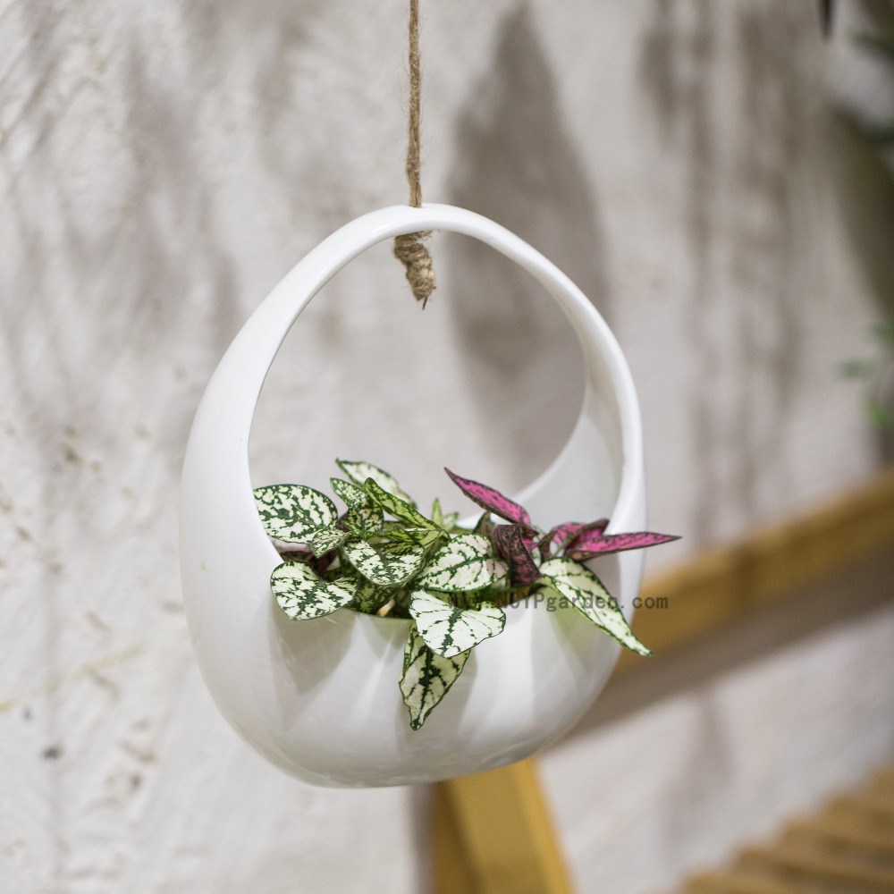 Small White Round Hanging Ceramic Flower Pot Basket Vertical Garden Decoration Pot Succulents Plants Holder Wall Ceramic Planter