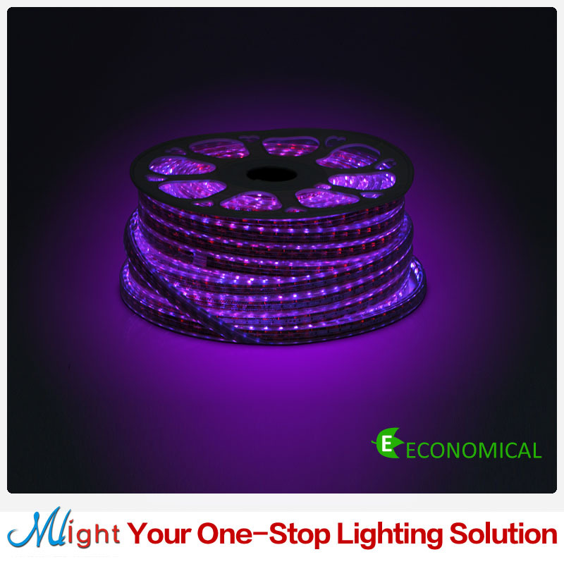 50 meters 220V RGB LED Strip High Quality Color Changable 5050SMD Strip Lights Decorative Tape Light for Outdoor Garden