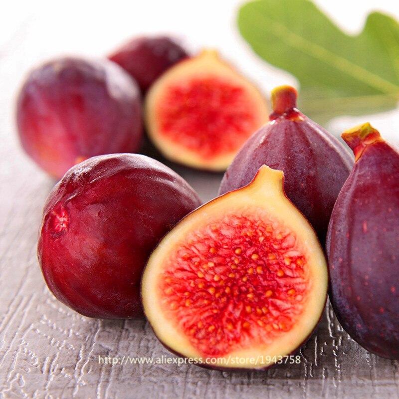 Buy 100pcs Figs Seeds Edible Fruit Bonsai
