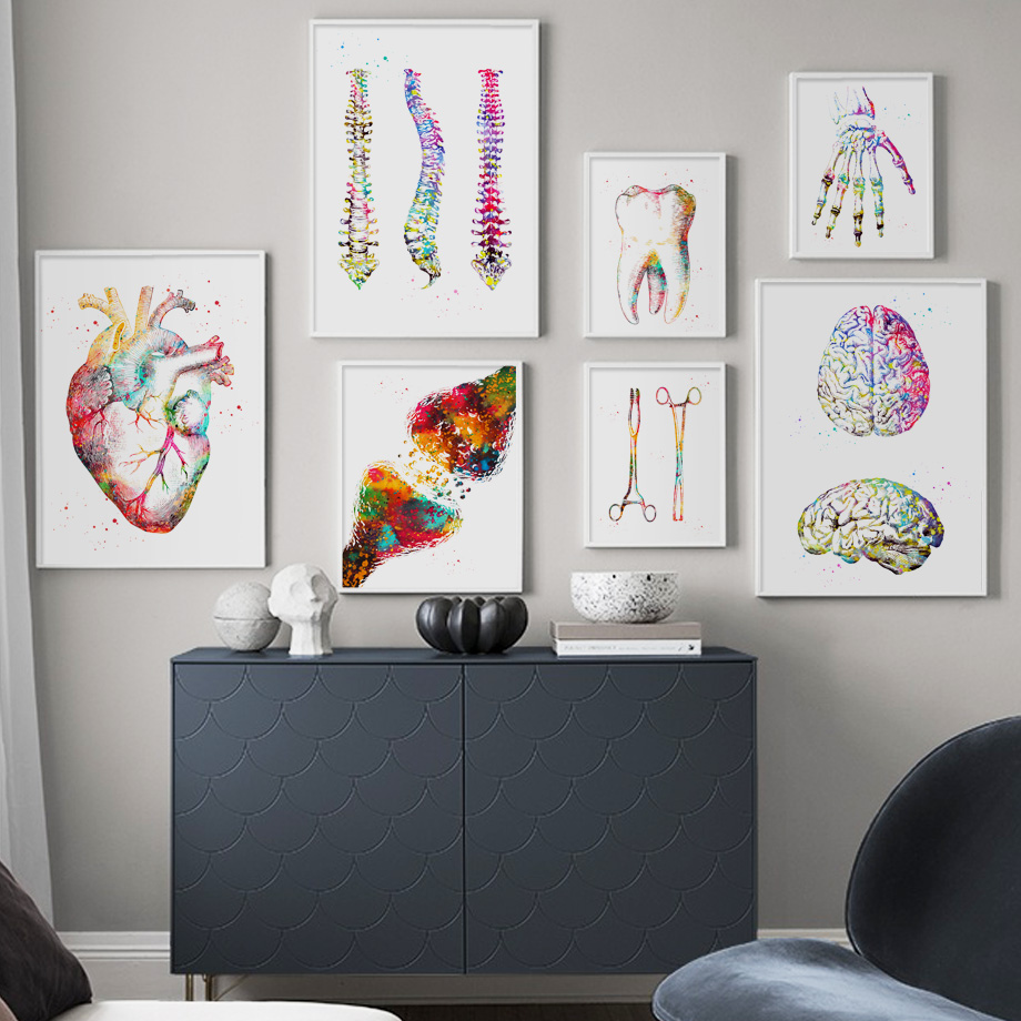 Anatomy Art Human Heart Brain Lungs Wall Art Canvas Painting Nordic Posters And Prints Wall Pictures For Doctor Office Decor