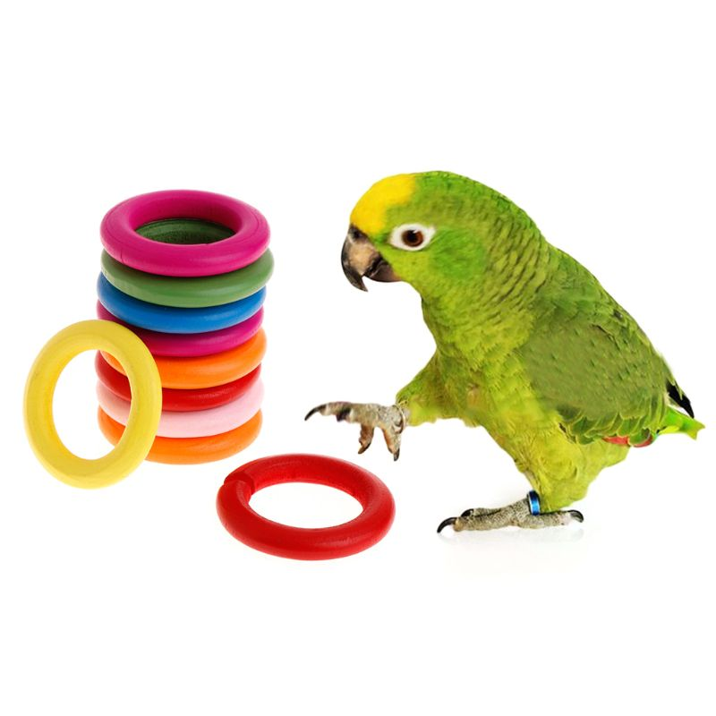 10 Pcs/Set Wooden Ring Parrot Toys Bite Chew Play Natural Colorful Rings Decoration Birds Parakeet Toy DIY Accessories
