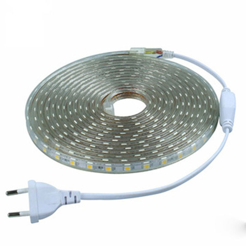 separation shoes 312c4 0b4e5 SMD5050 Flexible LED Strip light AC220V 60leds/m Waterproof IP67 Led Tape  AC110V LED Flexible Strip 240V With Free Power Adapter