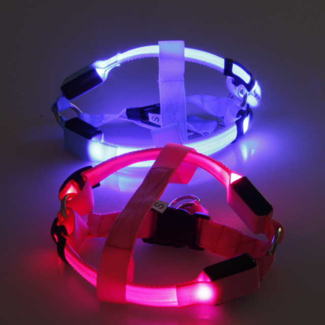 LED Light Harness Leash Rope