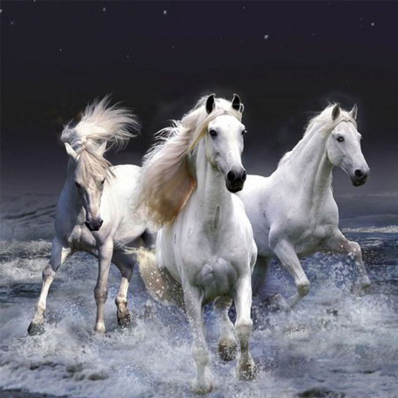 White Horses Needlework 3D DIY Diamond Embroidery Painting Home decor diamond mosaic painting Full Square diamond