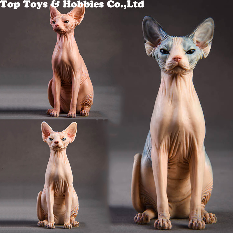 1/6 Resin Animal Model Jxk010 1/6 Canadian Hairless Sphynx Cat 3 Colors Pet Animal F 12
