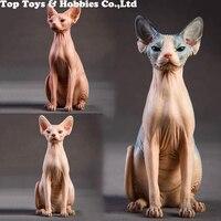 1/6 Resin Animal Model Jxk010 1/6 Canadian Hairless Sphynx cat 3 Colors Pet Animal F 12 Action figure soldier