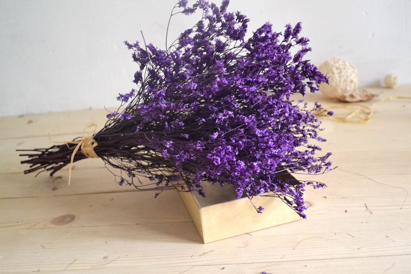 Dried Plum Purple Bouquet Decorated Lunar Holding Wedding Dry Naturally Shoot Props Home Decoration
