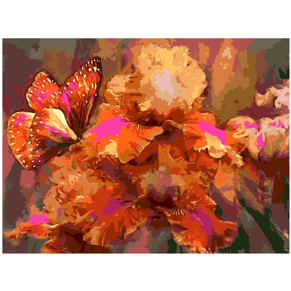 Oil-Painting Picture-Decoration Number Drawing Wall-Art Abstract Butterfly Szyh163 DIY