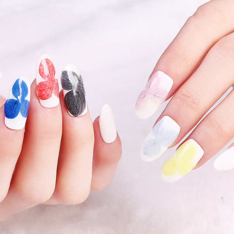 Aliexpress 5 Colors Nail Art Toold Real Dry Flower Stickers Storage Box Uv Gel Polish Sticker Decals Decoration M03800 From