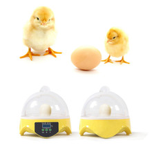Digital Mini Egg Incubator Temperature Hatchery Automatic Poultry Chicken Incubator Hatcher Machine Chicken Duck 7Eggs best price 220v 700w commercial chicken plucking machine with 30cm bucket duck chicken plucker poultry plucker for sale