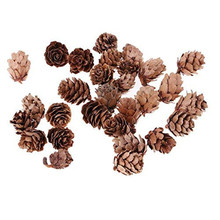 New 30pcs/Lot Dried Flowers Natural Pine Cone Handmade Decorative Flores Secas for Home Decoration DIY Crafting Accessories