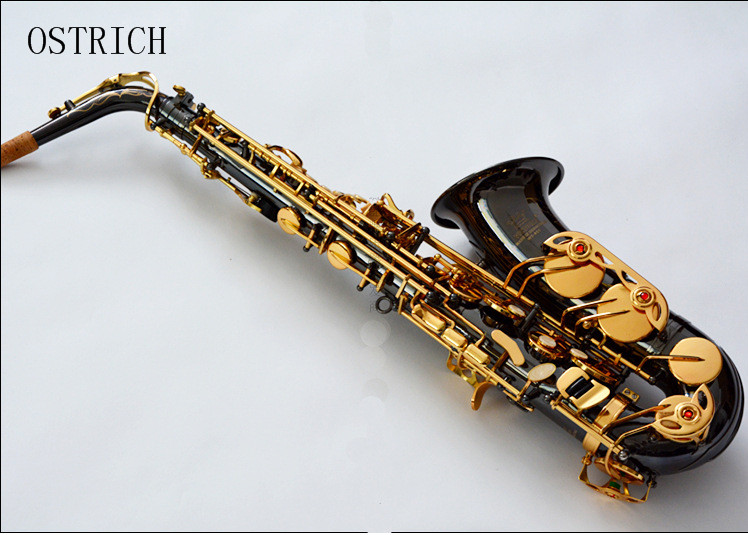 brand new ostrich black color high quality alto saxophone case low price in saxophone from. Black Bedroom Furniture Sets. Home Design Ideas
