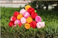 20 pieces muticolour flower toys beautiful rose flowers plush flowers gift toy about 33cm