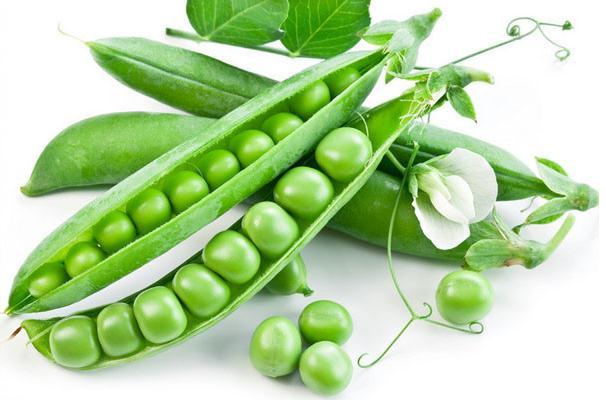 Online Get Cheap Garden Pea Aliexpresscom Alibaba Group