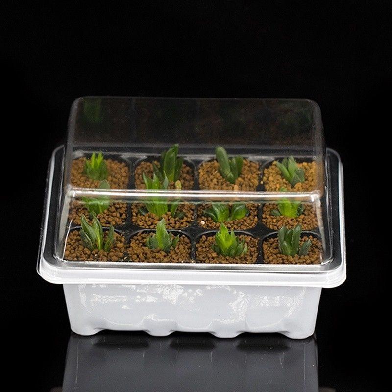3 шт./компл. вставить распространения питомник рассады начать лоток 12 отверстие семян растений расти поле