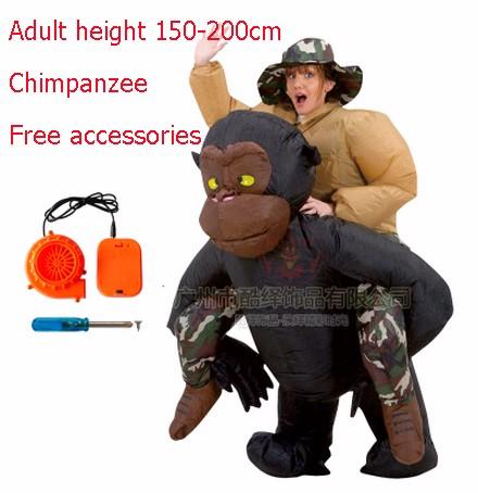 DB23985 inflatable dinosaur costume-11