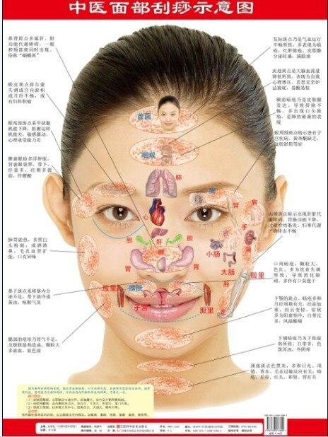 Facial scraping scraping diagrams wall charts tcm in massage facial scraping scraping diagrams wall charts tcm ccuart Image collections
