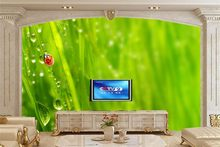Custom Ladybugs Insects Drops Grass Animals Nature wallpapers,livng room tv sofa wall bedroom wallpaper 3d mural papel de parede(China)