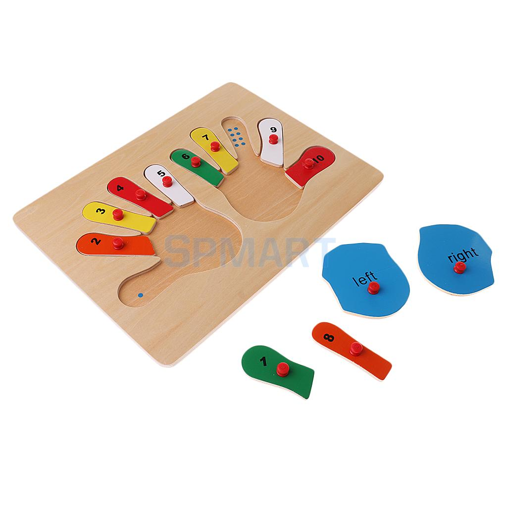 1-10 Hand Insert Jigsaw Puzzle Wooden Toy for Math Training Learning Develop