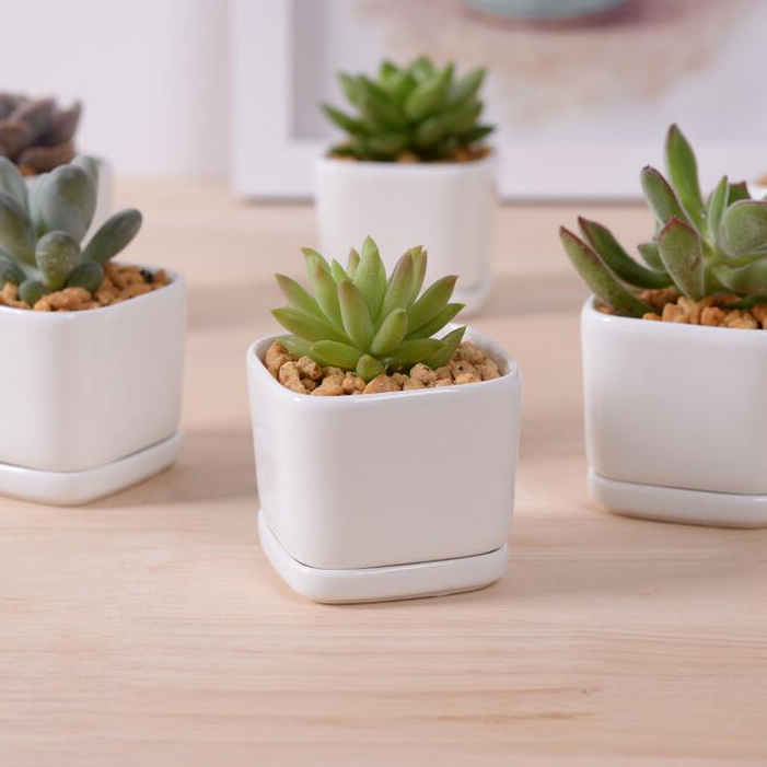 Hot Sale White Creamic Flower Pot With Tray Desktop Decor