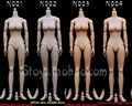 1/6 Large/Medium Breast Nude Body Scale Female Action Figure Toys Accessories