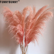 FUNNYBUNNY 1PC Pink Reed Trumpet Dried Flower Spikes Flowers Luxury Home Decor Love Gift Center Pieces