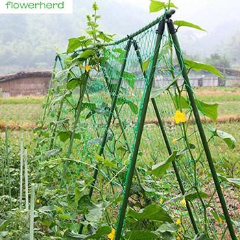 0 9 #215 1 8m 1 8X1 8m 1 8 #215 2 7m 1 8 #215 3 6m ogród netto winorośli roślin siatka wspinaczkowa siatka nylonowa do użytku domowego ogród tanie i dobre opinie Garden Net Z tworzywa sztucznego