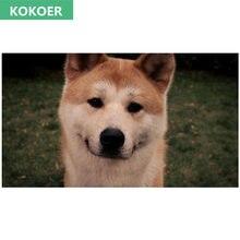 Алмазная 5d Вышивка «сделай сам» животное японская собака akita