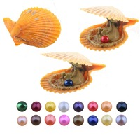 10 PCS/lot Pearl Shell Freshwater Cultured Love Wish Pearl Oyster with 8 8.5 mm Round Pearls Random Color