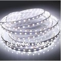 12V Cool White / Warm White Red Green Blue RGB 300LED/5M 20W no-waterproof 3528SMD LED Strip, 60LEDS / m Free shipping