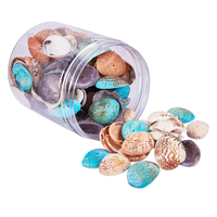 1 Box About 100 120pcs Assorted Dyed Natural Sea Shells Seashell With Hole