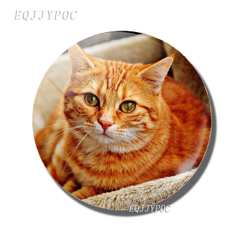 Leuke Kat Magneet 50mm Glas Cabochon Koelkast Sticker Message Board Tigertight Felis Amerikaanse Korthaar Creative Home Decor