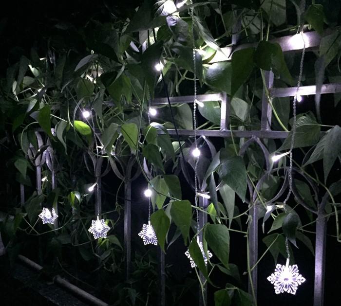 Christmas LED String Light (7)