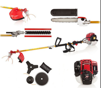 Manufacturer Hot Sell 4 Stroke GX35 Honda Engine 5 In 1 Petrol Hedge Trimmer Chainsaw Trimmer