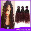 6A Ombre Brazilian Virgin Hair Kinky Curly 4 Bundles Two Tone 1B Burgundy Brazilian Hair Weaves Red Ombre Human Hair Extensions
