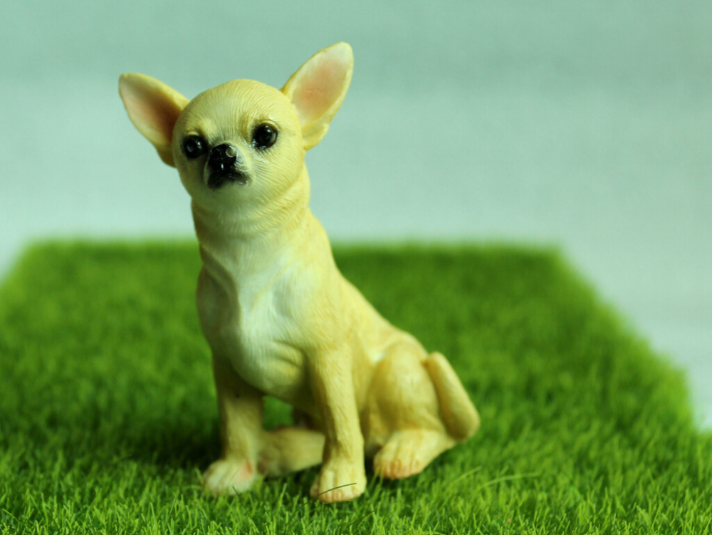 top 10 most popular resin chihuahua list and get free