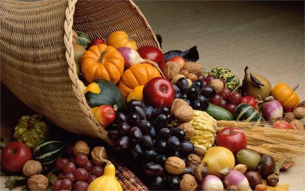 현대 직사각형 새로운 음식 야채 가을 시즌 과일 추수 감사절 풍요의 뿔 홈 장식 캔버스 포스터 인쇄 그림|prints  painting|poster printcanvas poster - AliExpress