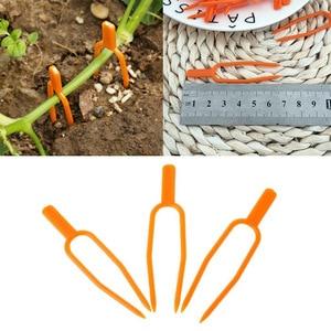Image 2 - Clips pour plantes de jardin en plastique, outil de jardinage, Clips pour treillis, ficelle, serre, vignes à grouper, 50 pièces