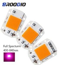 LED Lamp Chip COB Bulb Grow Light AC 220V 20W 30W 50W Full Spectrum Lampada Spotlight For Indoor Seedling LEDs DIY