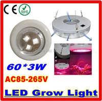 Led planta cresce luzes 60 * 3 W 180 W LED Grow lâmpada para planta flor hidroponia sistema AC 85 V   265 V bulb fibre lamp girl bulb clip -