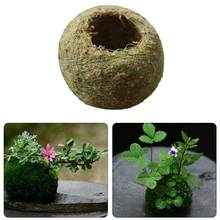 Moss Ball Moss Bonsai Personalized Flower Pot Bird Nest Flower Plant Desk Table Decoration Plantpot diameter 4cm(China)