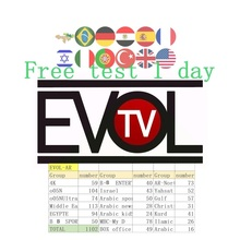 European IPTV subscribes to Italian Arabic, Germany, Spain, USA, XXX Channel 6000 + Channel Android Intelligent IPTV Support M3U